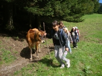 Mädchenriegen Reise 2013 - Bachtel
