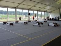 Turnverein Gossau am Turnfest in Ossingen